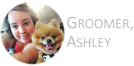 groomer ashley.png